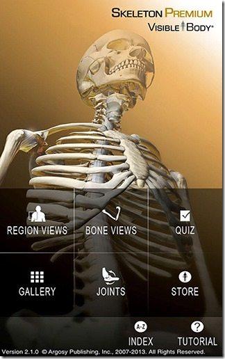 Skeleton Premium 03