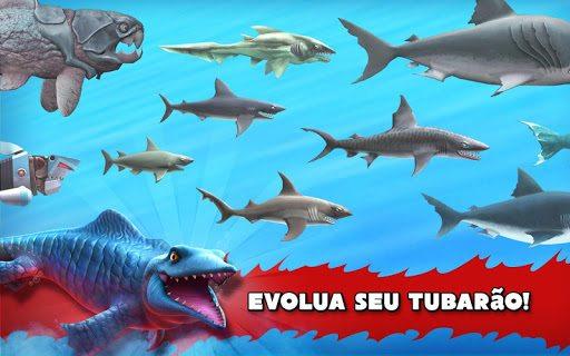 Hungry Shark Meio (2)