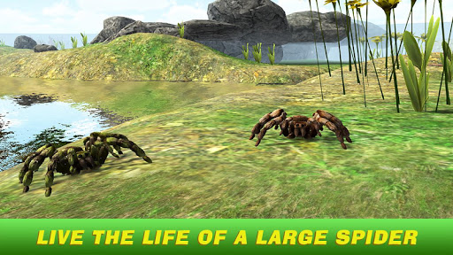 Tarantula Simulator 3D