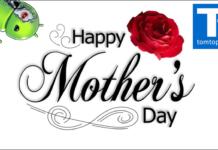 tomtop dia das mães