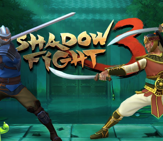 Shadown Fight 3