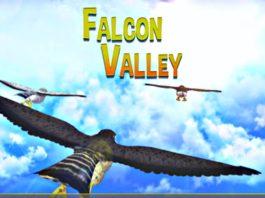 Falcon Valley