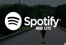 Spotify Music v8.4.75.670 Final Mod Lite APK