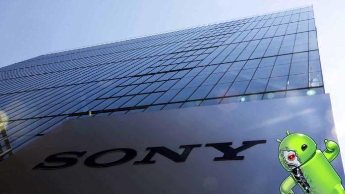 Sede Sony
